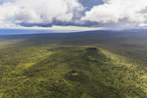 USA, Hawaii, Big Island, aerial view of Puna Forest Reserve - FOF10706