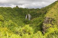 USA, Hawaii, Kauai, Wailua State Park, Opaekaa Falls - FOF10727