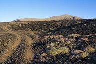Spain, Canary Islands, Lanzarote, Tinajo, Los Volcanos nature park, traffic lane through lava field - SIEF08598