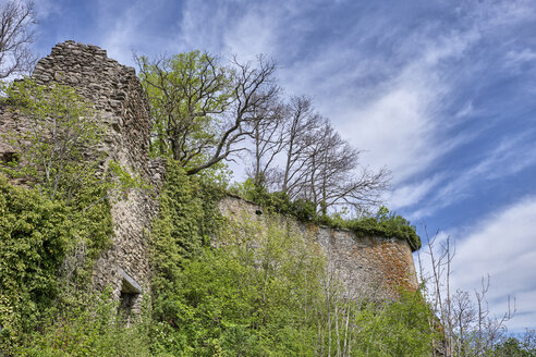 Germany, Baden-Wuerttemberg, Constance district, castle ruin Hohenkraehen - ELF02014