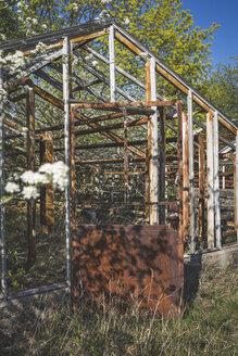 Old greenhouse in spring, Brandenburg, Germany - ASCF00993