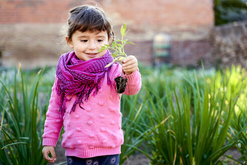 Portrait of toddler girl in the garden looking at small tomato plant in her hand - GEMF02925