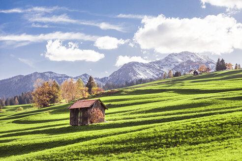 Italy, Trentino Alto-Adige, Vigo di Fassa, barn on alpine meadow - FLMF00183