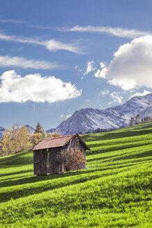 Italy, Trentino Alto-Adige, Vigo di Fassa, barn on alpine meadow - FLMF00186