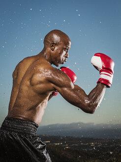 Water splashing on black boxer outdoors - BLEF01022