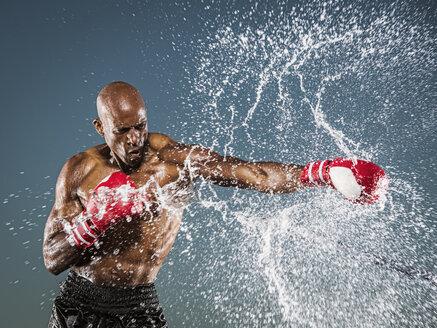 Water splashing on black boxer punching - BLEF01025