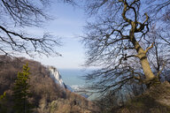 Germany, Mecklenburg-Western Pomerania, Ruegen, Jasmund National Park, Chalk Cliff Koenigsstuhl - WIF03888