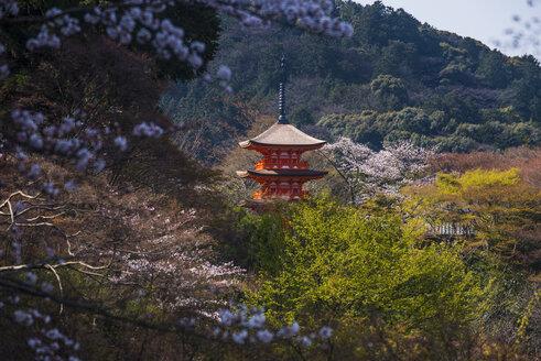 Japan, Kyoto, view to Kiyomizu-dera temple - RUNF01916
