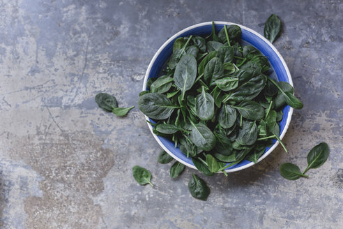Baby spinach in a bowl - STBF00323