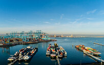 Inland shipping and large container terminal, Maasvlakte, Rotterdam, Zuid-Holland, Netherlands - CUF50857