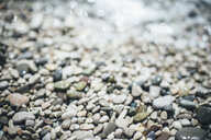Wet pebbles at beach - BLEF03174