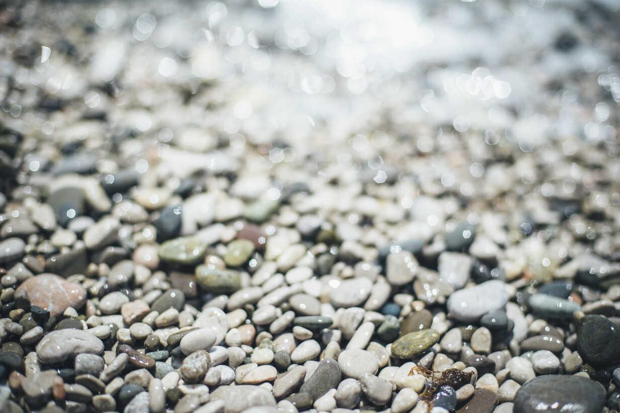 Wet pebbles at beach - BLEF03174 - Ivan Evgenyev/Westend61