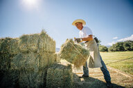 Caucasian farmer lifting bale of hay - BLEF03222