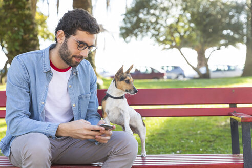 Young man sitting on park bench with his dog using smartphone - WPEF01508