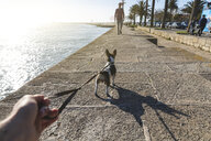 Portugal, Porto, man going walkies with dog on promenade - WPEF01517