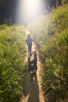 Back view of toddler girl walking with dog in nature - GEMF02970