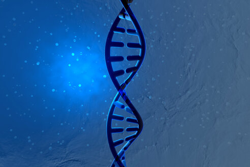 3D Rendered Illustration, visualisation of a DNA double helix - SPCF00411