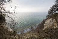 Chalk cliff, Jasmund National Park, Ruegen, Germany - WIF03910