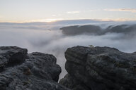 Germany, Saxony, Elbe Sandstone Mountains, view from Gleitmannshorn to fog in the valley at sunrise - RUEF02217