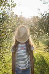 Girl with straw hat standing in an olive grove, Tuscany, Italy - OJF00348
