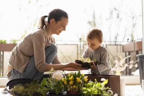 Deutschland, München, Mutter 36 Jahre und Tochter 2 Jahre pflanzen auf dem Balkon Blumen ein - DIGF07036