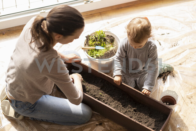 Mother and daughter with flower box on balcony - DIGF07039 - Daniel Ingold/Westend61
