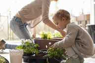 Mother and daughter planting flowers on balcony - DIGF07045