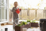 Cutle little girl watering flowers at home - DIGF07054
