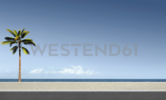 Palm tree at ocean - BLEF03801 - Chris Clor/Westend61