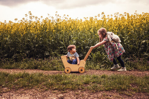 Girl with her brother in a doll buggy on a field way - SEBF00109