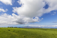 View along the Haleakala Highway, Haleakala National Park, Maui, Hawaii, USA - FOF10792