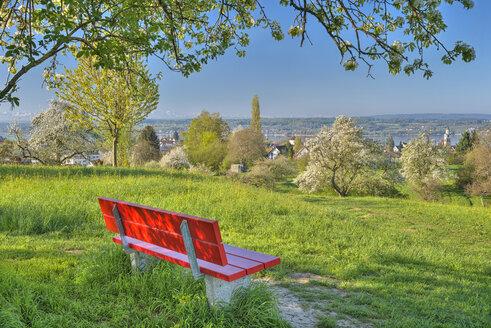 Deutschland, Baden-Württemberg, Bodensee, Überlinger See, Überlingen, Bank beim Heiligengrundweg im Frühling - SH02182