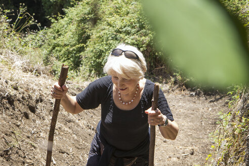 Senior woman hiking through forest at Garajonay National Park, La Gomera, Canary Islands, Spain - MAMF00676