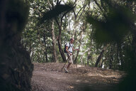 Young man hiking through forest at Garajonay National Park, La Gomera, Canary Islands, Spain - MAMF00679