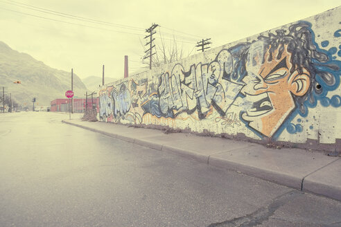 Graffiti wall near wet street, Detroit, Michigan, United States - BLEF04447