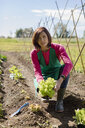 Woman working in her vegetable garden, Italy - MAUF02461