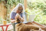 Caucasian woman using laptop petting dog on backyard patio - BLEF04901
