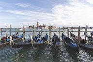 View to San Giorgio Maggiore with row of gondolas in the foreground, Venice, Italy - WPEF01549