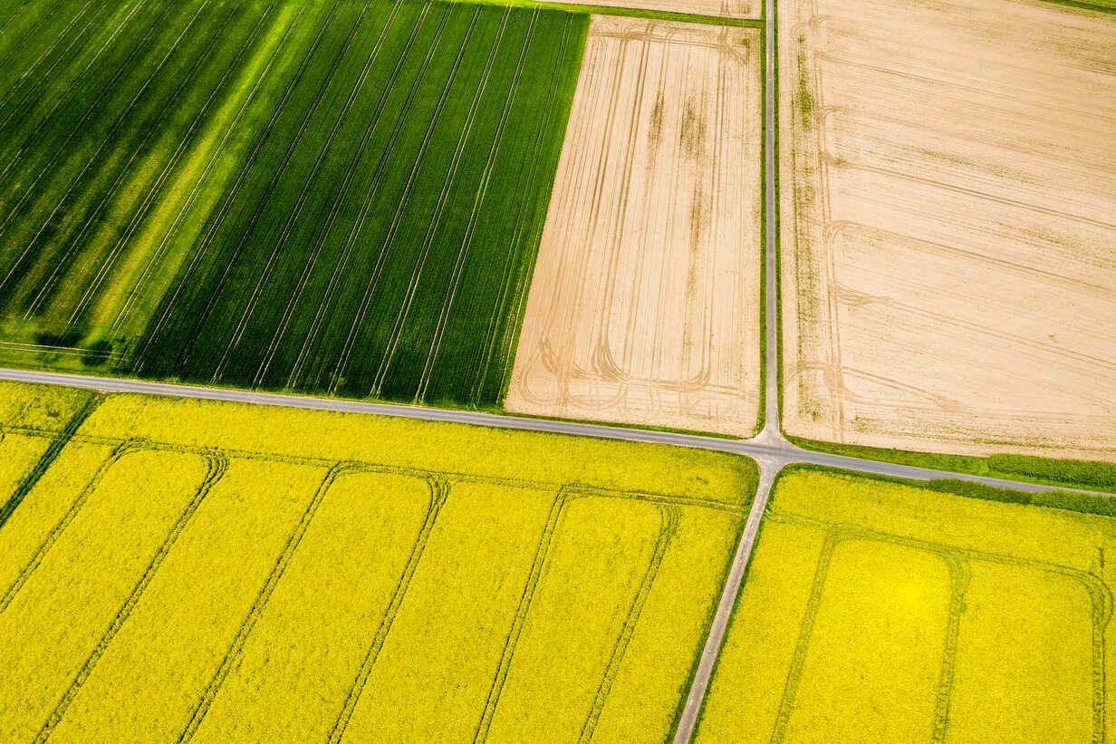 Aerial view of rape fields and cornfields near Usingen, Hesse, Germany - AMF07052 - Martin Moxter/Westend61