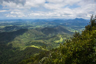 Overlook at the Springbrook National Park, New South Wales, Australia - RUNF02208