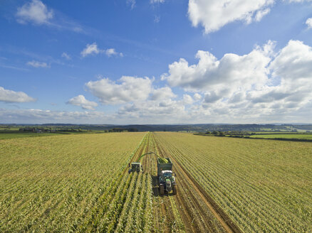 Aerial view of tractor filling trailer with harvested maize in sunny field under blue sky with clouds - JUIF01160