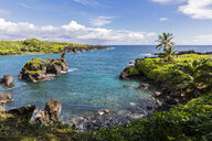 Waianapanapa State Park, Maui, Hawaii, USA - FOF10822