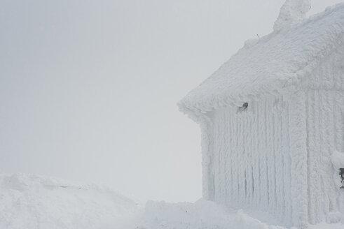 Arbermandl, Deutschland, Erzgebirge, Fichtelberg, Sachsen, Schnee, Winter - MJF02356