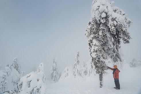Arbermandl, Deutschland, Erzgebirge, Fichtelberg, Sachsen, Schnee, Winter - MJF02359