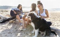 Three women with dog and guitar on the beach - MGOF04082