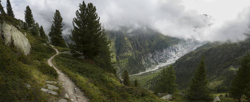 Trail to Mt Blanc, Switzerland - MINF11731
