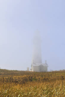 Yaquina Head Lighthouse cloaked in fog, Newport, Oregon, United States - MINF12052