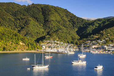 Harbour of Picton, South Island, New Zealand - RUNF02671