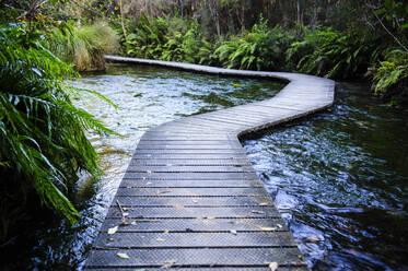 Boardwalk at Te Waikoropupu Springs, Takaka, Golden Bay, South Island, New Zealand - RUNF02677
