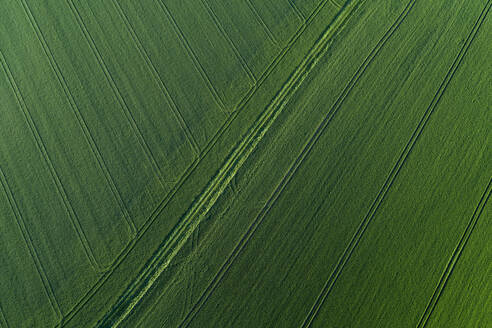 Aerial View of abstract landscape with agricultural fields with tire tracks, springtime, Franconia, Bavaria, Germany - RUEF02237